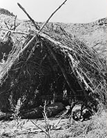 Paiute Wickiup, 1874